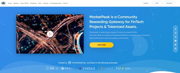 Marketpeak Review - website