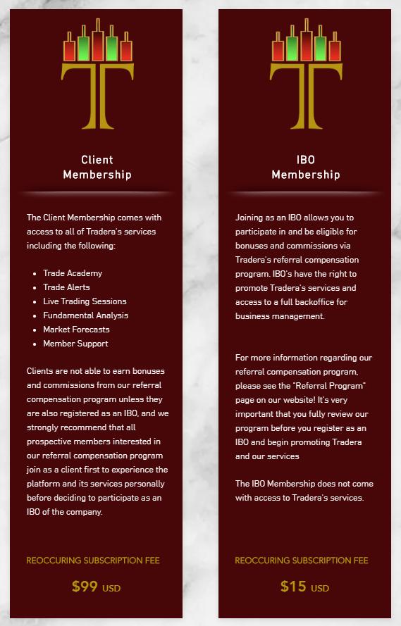Tradera Review - membership plan