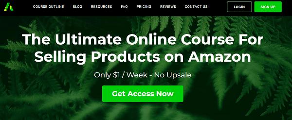Last Amazon Course Review - website